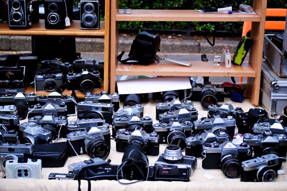 La mejor cámara para fototrampeo