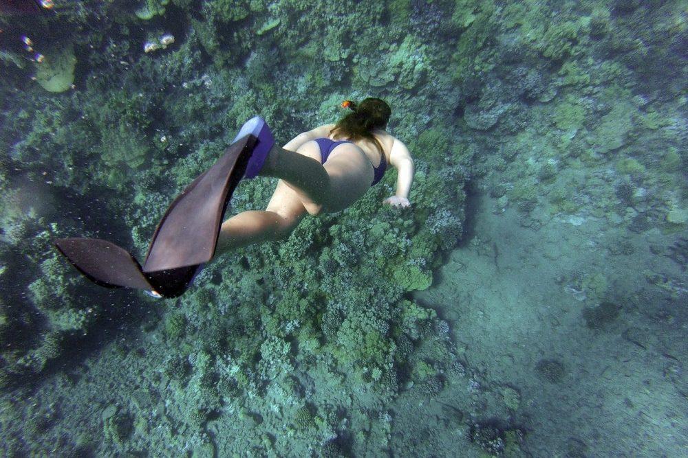 Las 6 cámaras subacuáticas más baratas